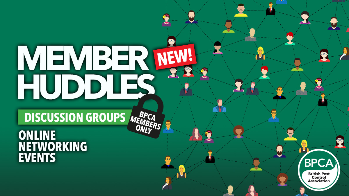 BPCA member huddles networking meetings online now