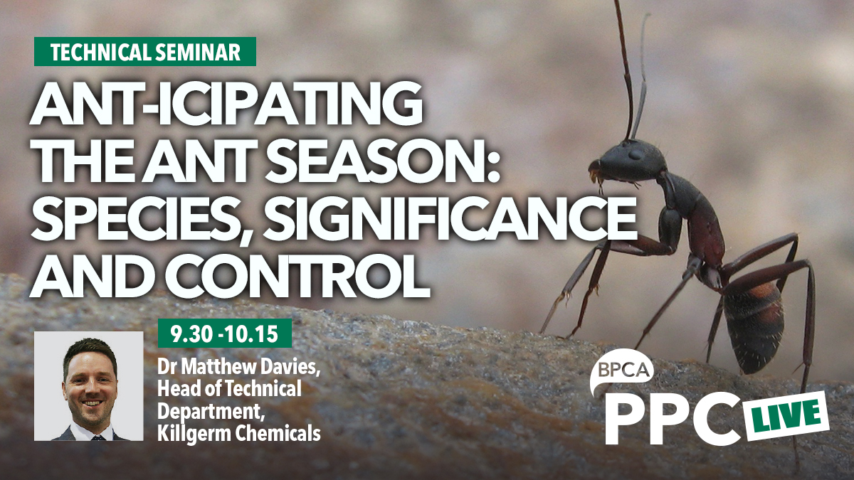 Anticipating the ant season talk at ppc live 2020