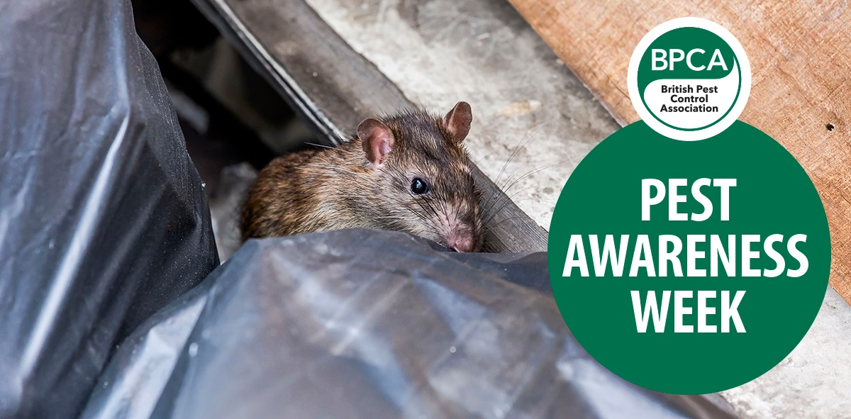 Pest Awareness Week 2018