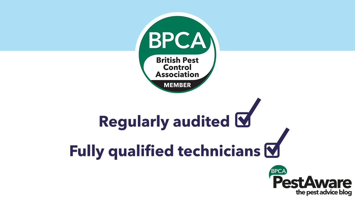 Audited to the British Standard for Pest Management and have fully qualified technicians