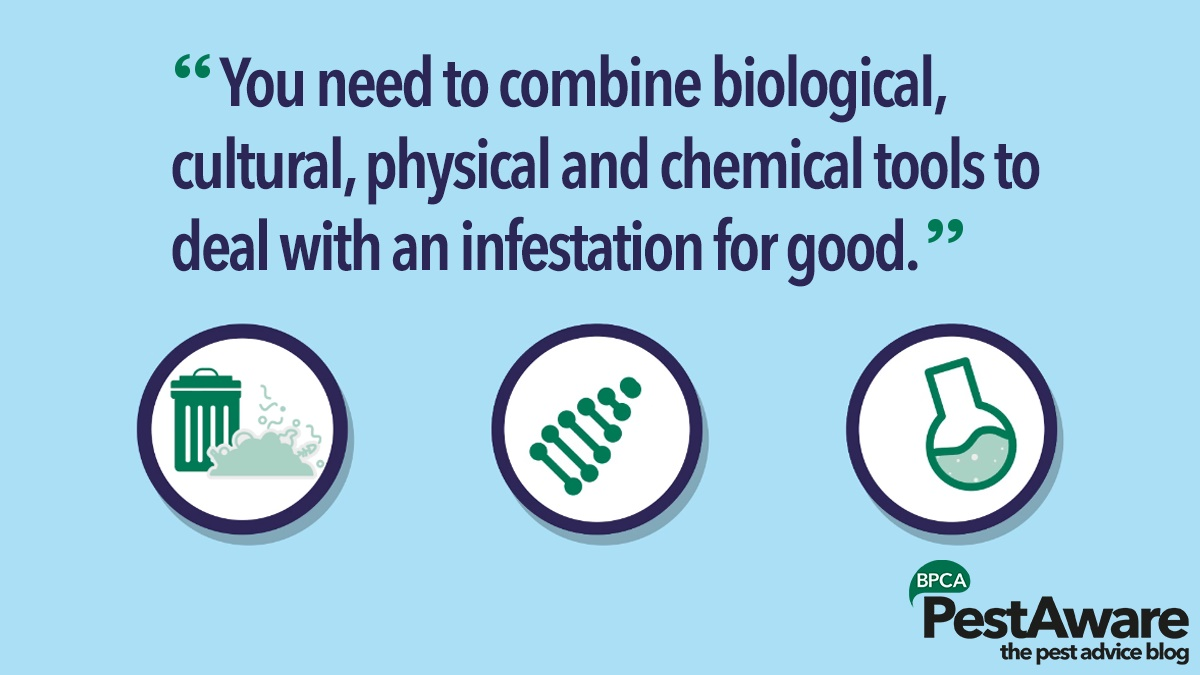 Combine biological cultural physical and chemical tools to deal with pest infestations
