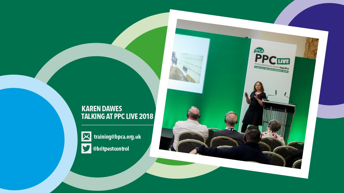 Karen talking at PPC Live 2018