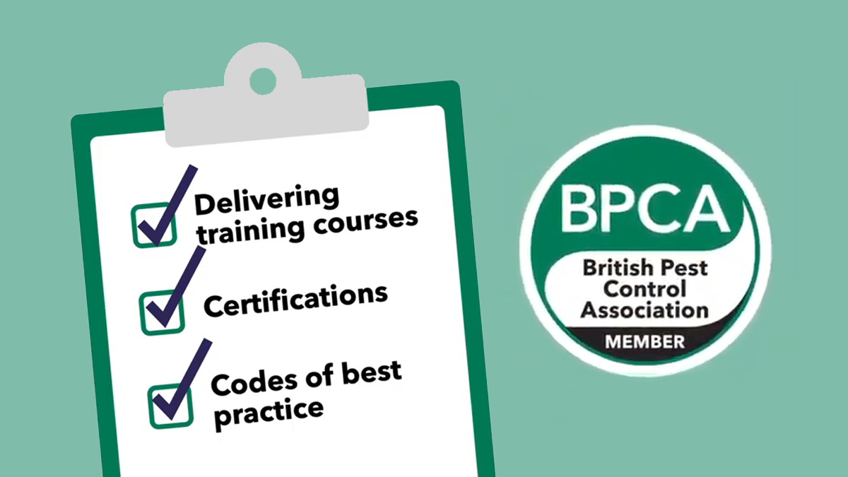 BPCA can help you find a professional