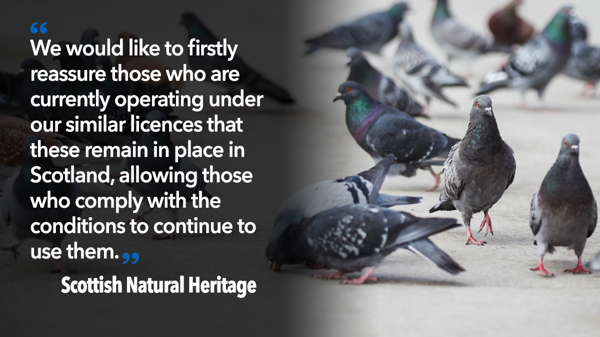 Scottish natural Heritage quote