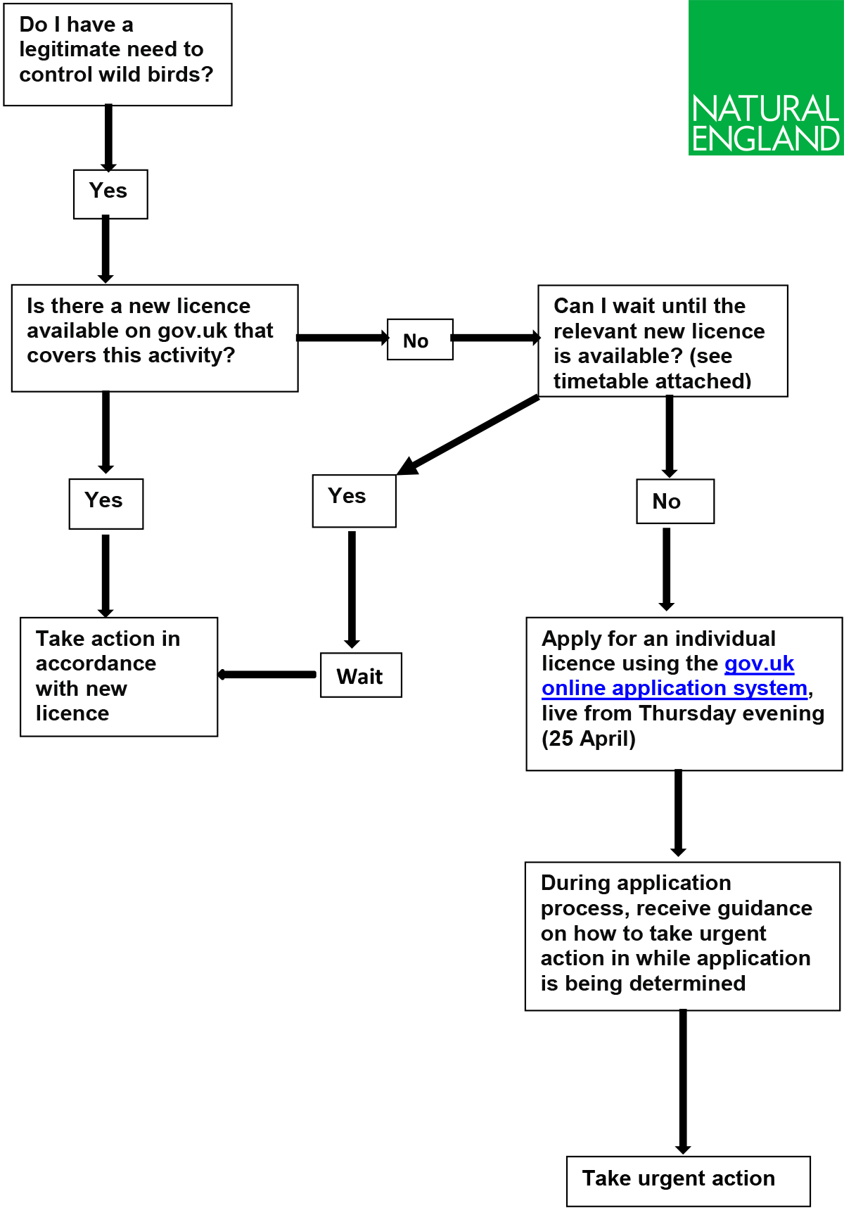 Flowchart for interim measures