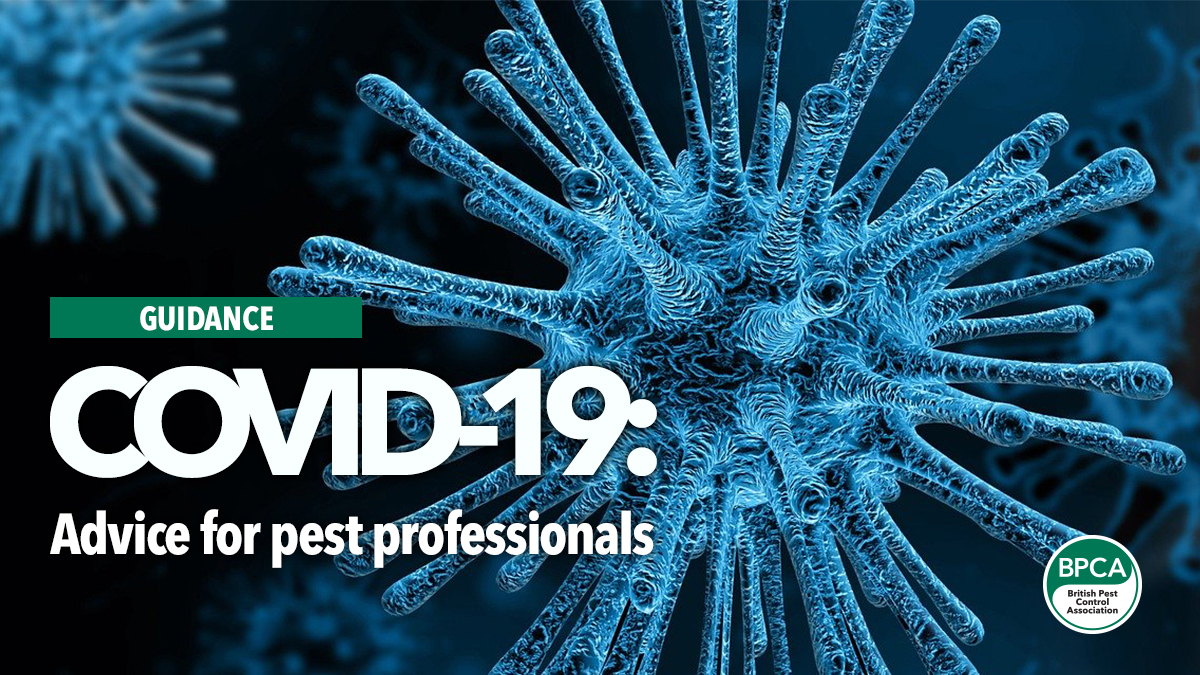covid 19 advice for pest professioansl