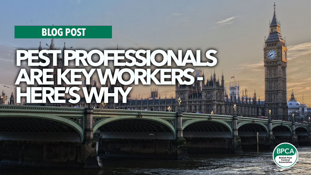 pest professionals are key workers covid
