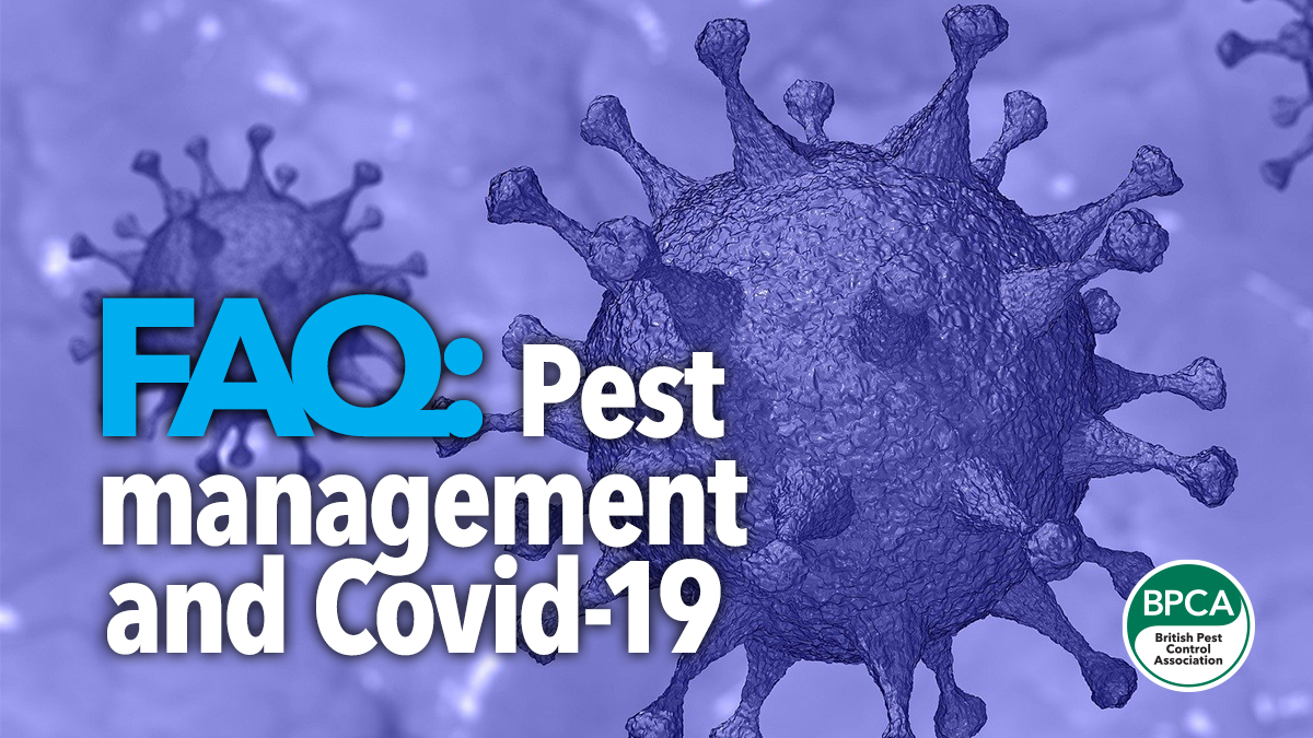 FAQ Pest management and Covid19