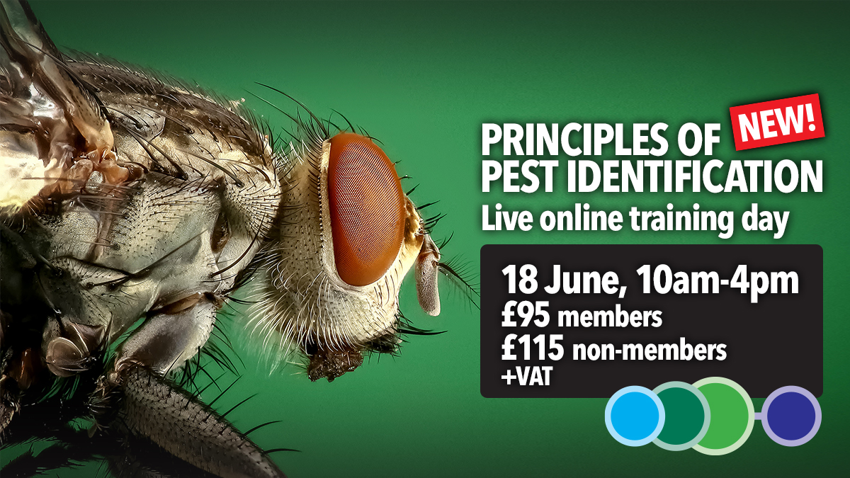 Principles of Pest Identification trianing course by BPCA