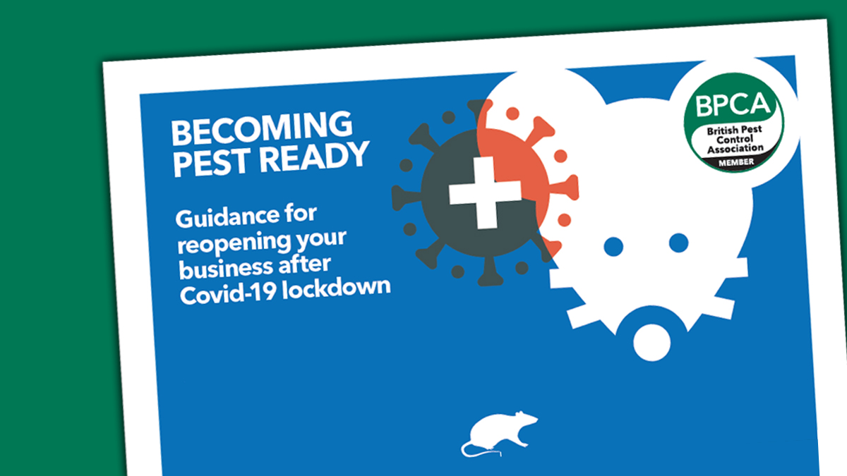 covid 19 pest ready guidance for clients