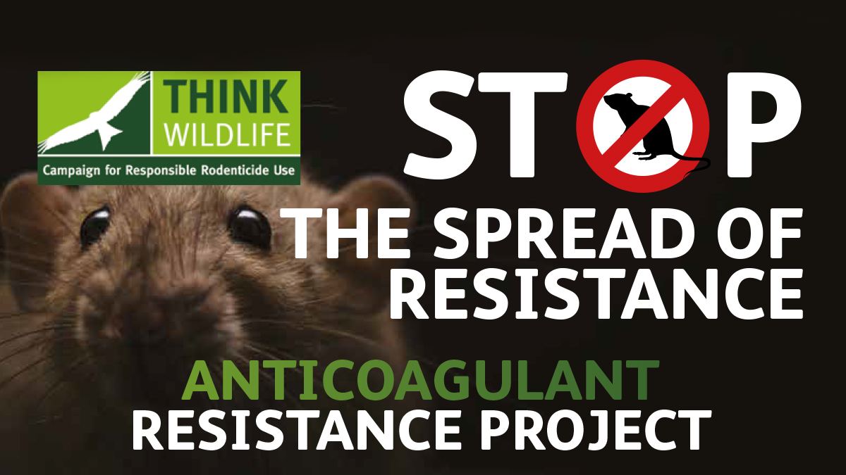 Stop the spread of resistance CRRU rodenticide resistance campaign UK