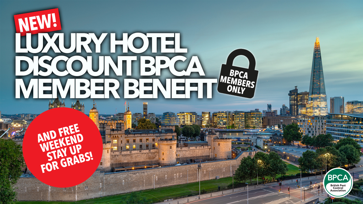 new-bpca-member-benefit-blue-orchid-hotels