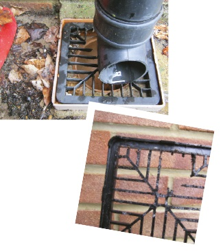 Rat damage to drain cover