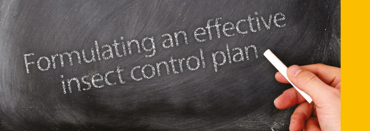 Formulating an effective insect control plan