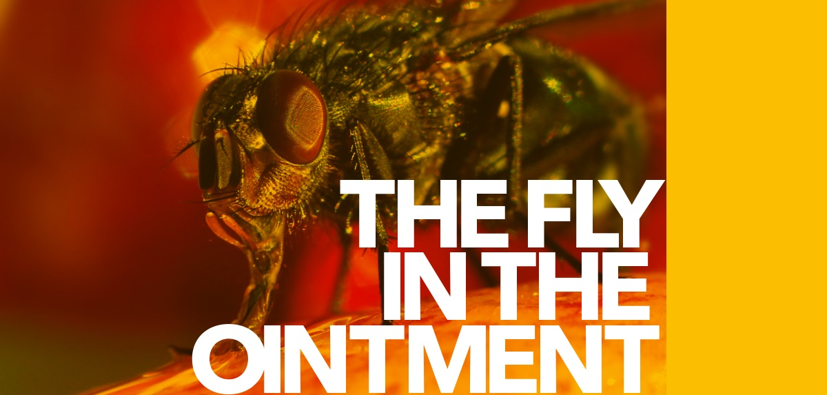 The fly in the ointment