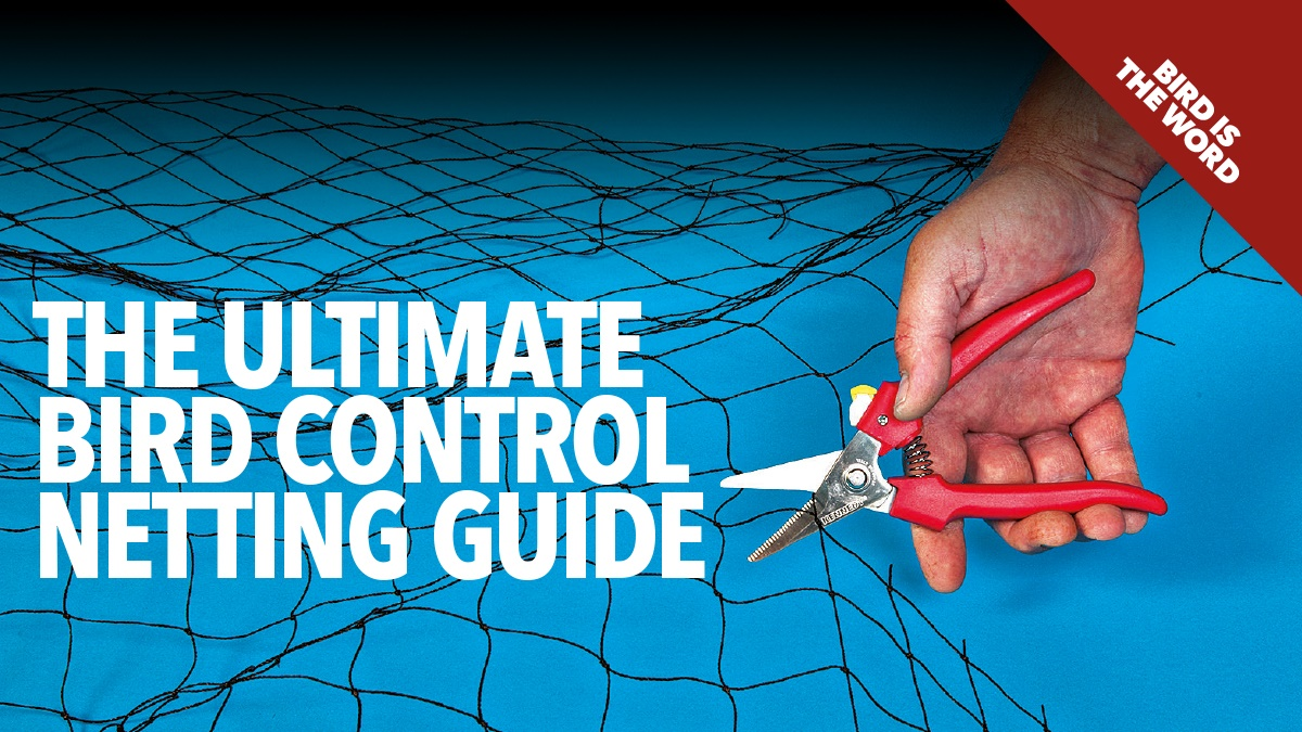 The ultimate bird control netting guide