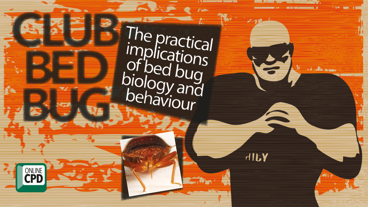 The practical implications of bed bug biology and behaviour