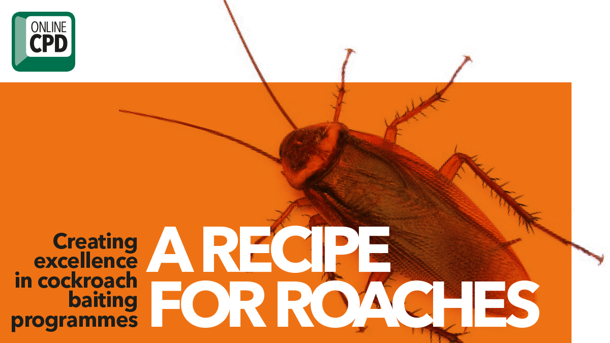 Creating excellent cockroach baiting programmes