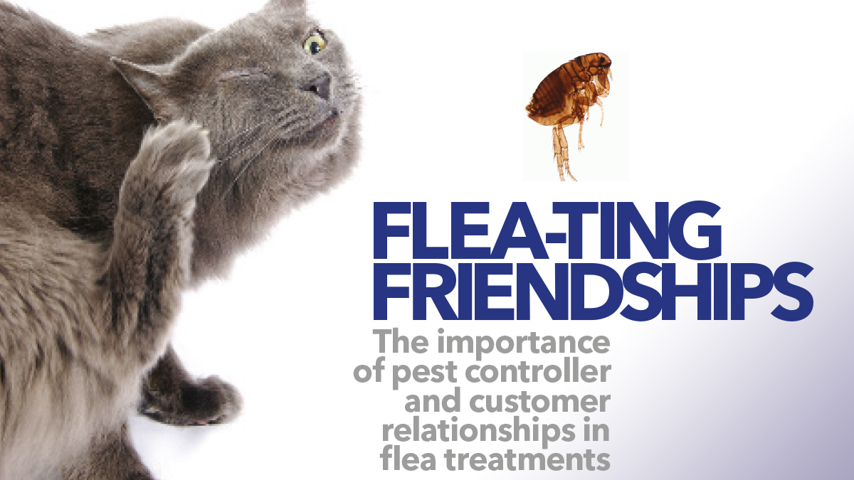 The importance of pest controller and customer flea treatments