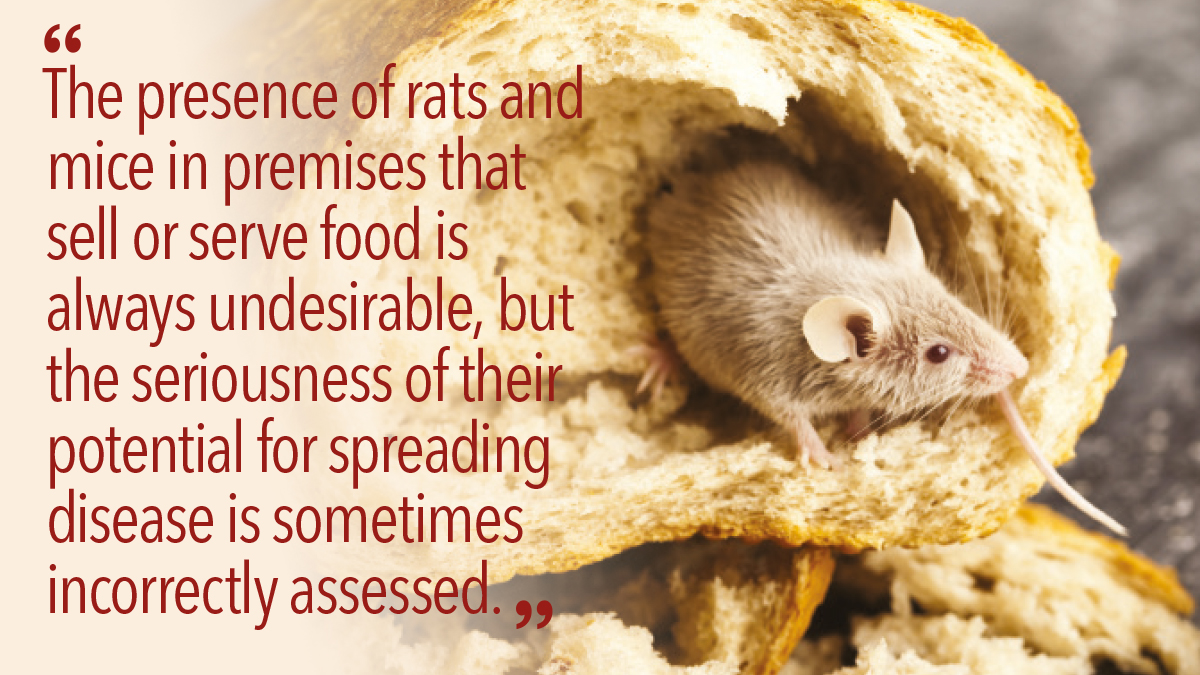 The presence of rats and mice in premises that sell or serve food is always undesirable
