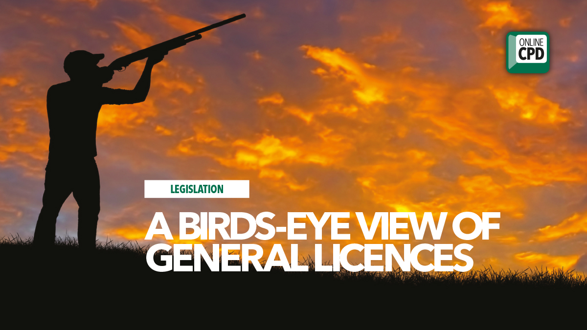 birds eye view general licences bpca defra