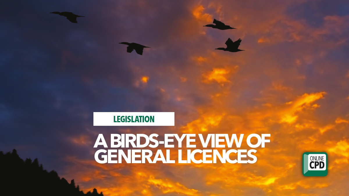 birds eye view general licences bpca defra 2