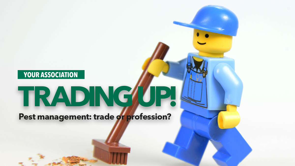 trading up trade or profession