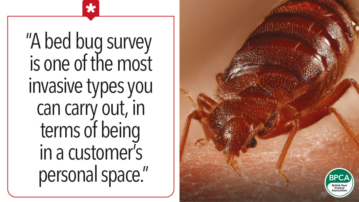 A bed bug survey is one of the most invasive types you can carry out