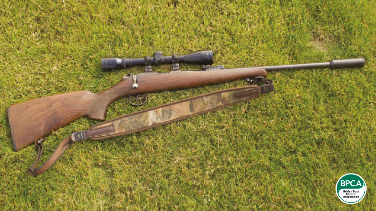 Daves 22 rim-fire rifle as effective as it is deadly
