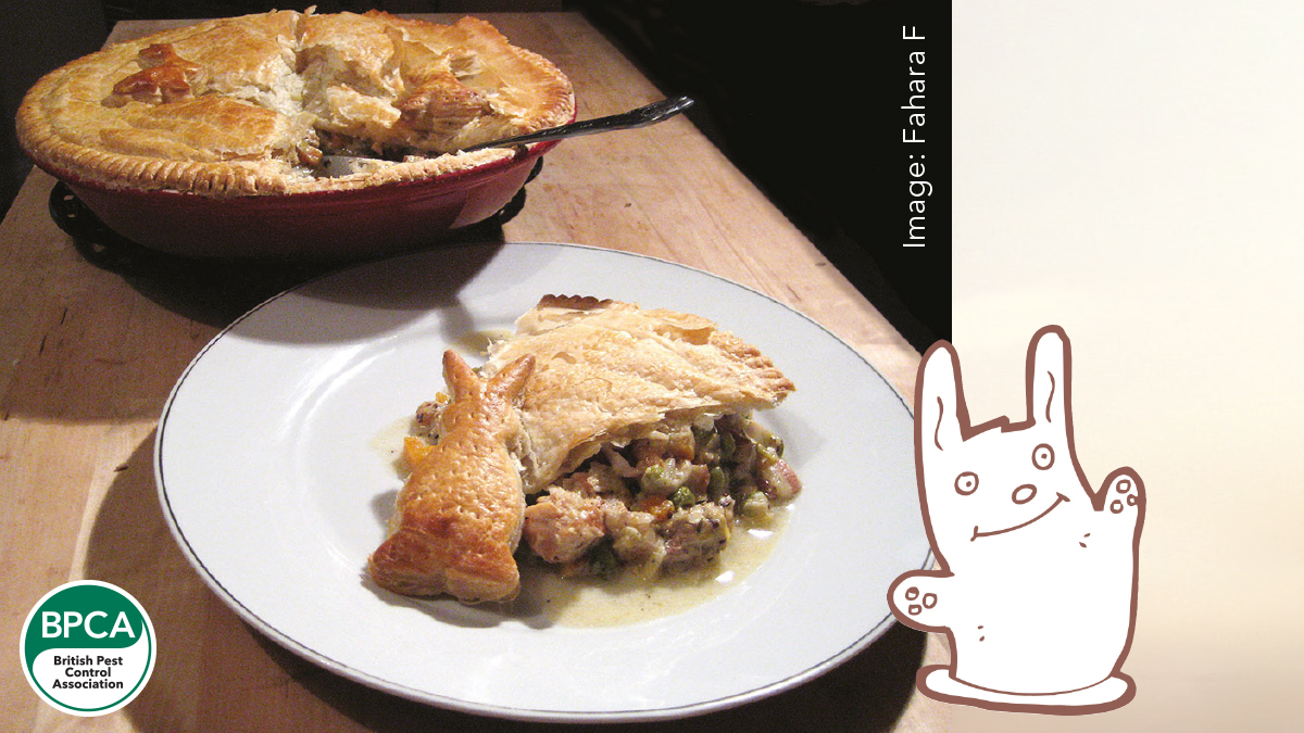 Daves traditional rabbit pie recipe