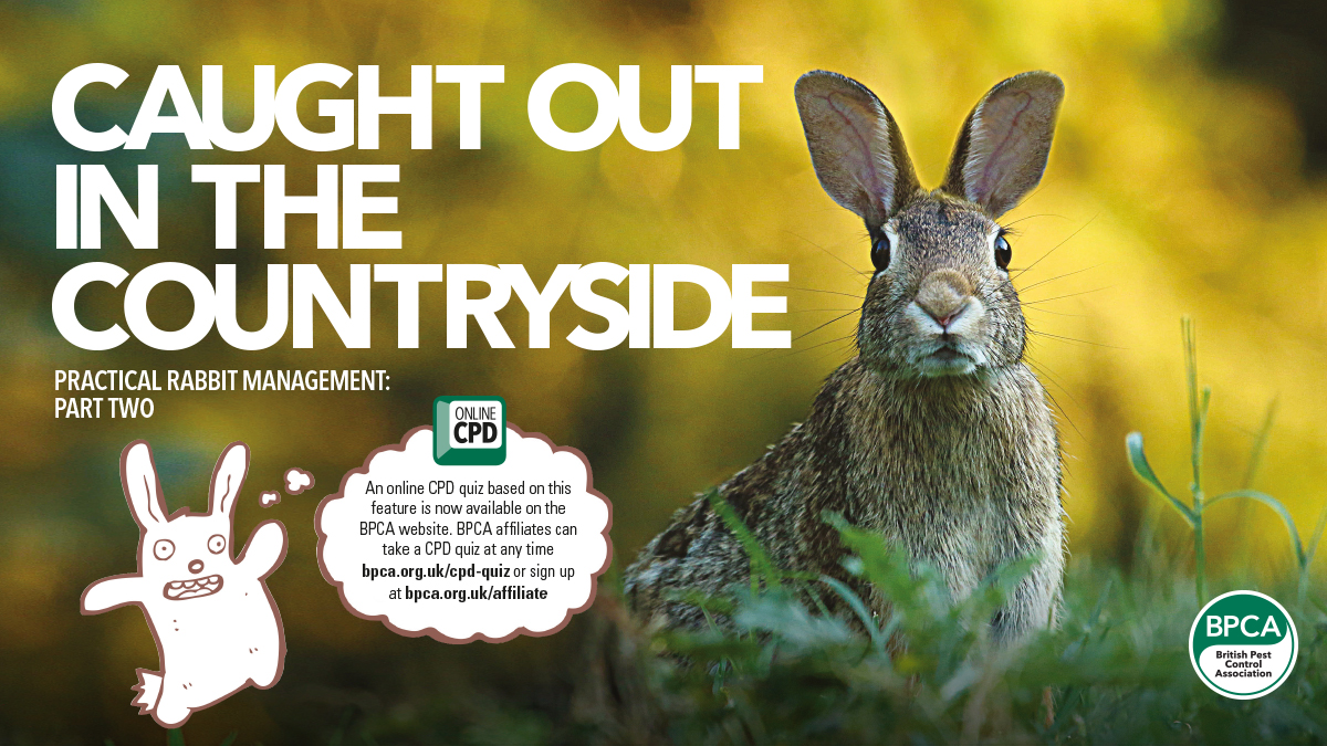 Practical rabbit management part 2 BPCA pest control magazine