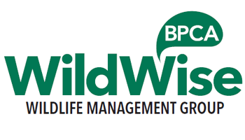 British Pest Control Association BPCA WildWise Wildlife management special interest group