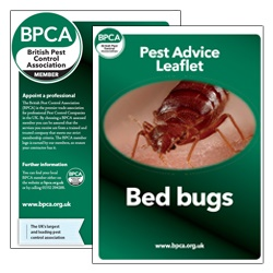 Bed-bugs-pest-advice-leaflet-BPCA