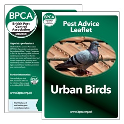 Birds-pest-advice-leaflet-BPCA