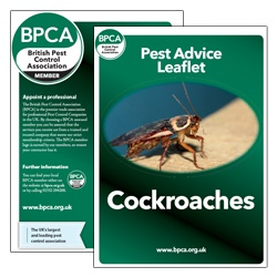 Cockroaches-pest-advice-leaflet-BPCA