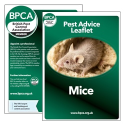 Mice-pest-advice-leaflet-BPCA
