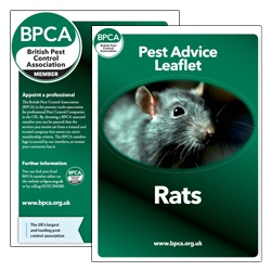 Rats-pest-advice-leaflet-BPCA