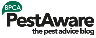 PestAware the pest advice blog