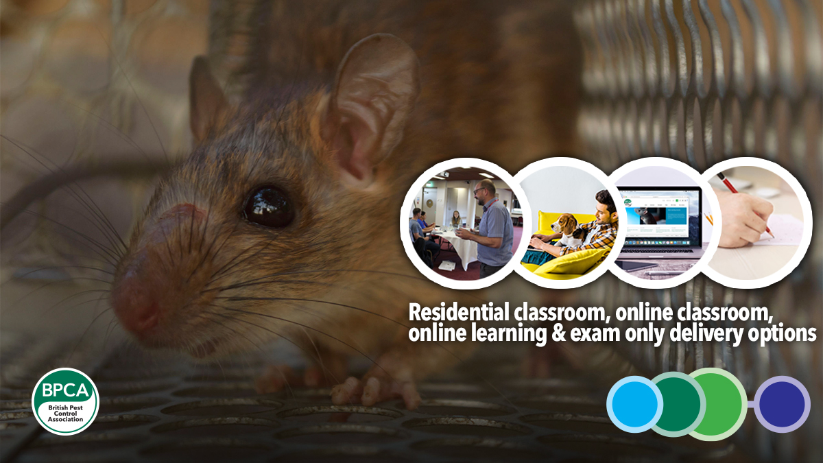 Level 2 Award in Pest Management RSPH BPCA courses and exams to study online or in a classroom